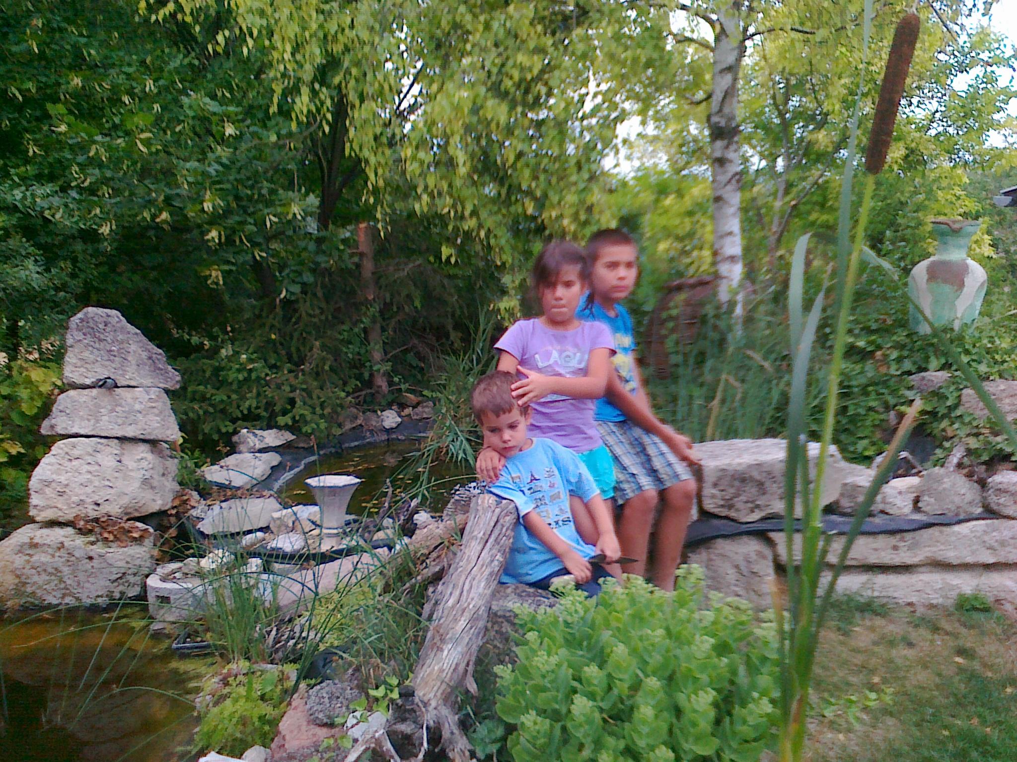 Elkészült a kerti tó 2011